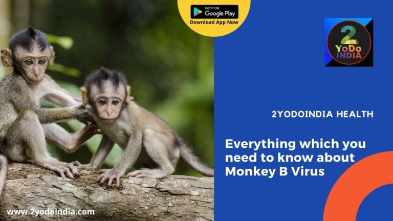 Everything which you need to know about Monkey B Virus   What is Monkey B Virus   How does the Monkey B Virus get Transmitted   How can a Human get Infected with Monkey B Virus   What are the symptoms of Monkey B Virus   Who are at risk for Monkey B Virus   Treatment & Prevention of the Monkey B Virus   2YODOINDIA